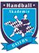 Logo-Handballakademie-Bayern