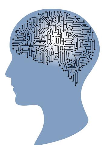 Das Gehirn lässt sich jederzeit umstrukturieren