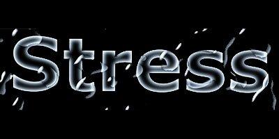 Mentale Stärke – Erfolg beginnt im Kopf